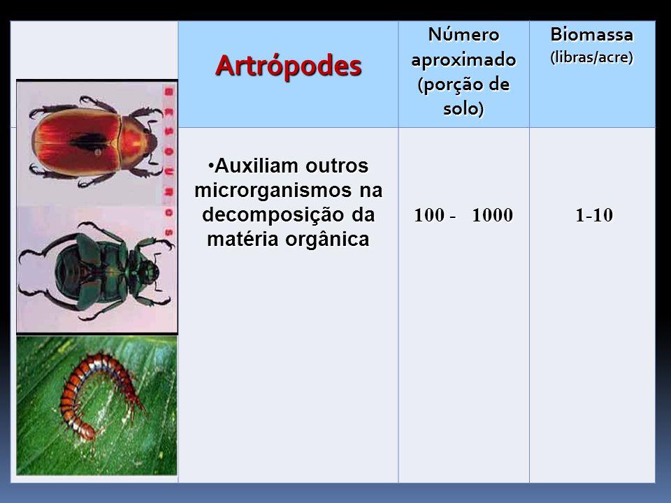 Artrópodes Número aproximado (porção de solo) Biomassa (libras/acre)