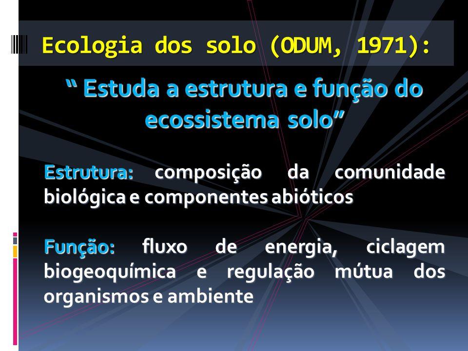 Ecologia dos solo (ODUM, 1971):