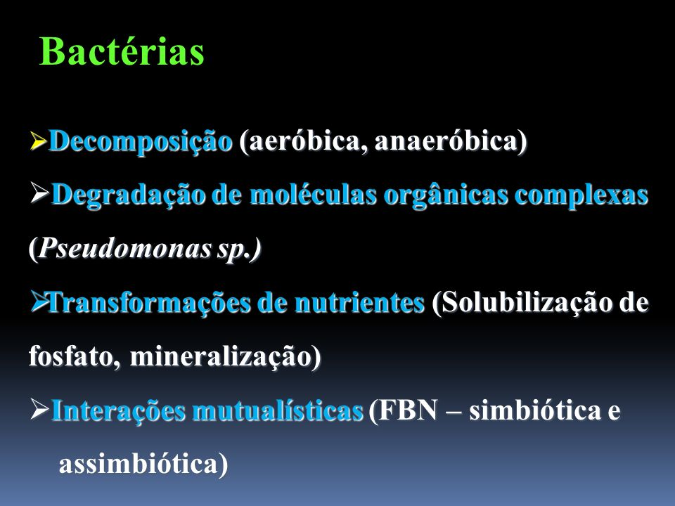 Bactérias Decomposição (aeróbica, anaeróbica) Degradação de moléculas orgânicas complexas (Pseudomonas sp.)