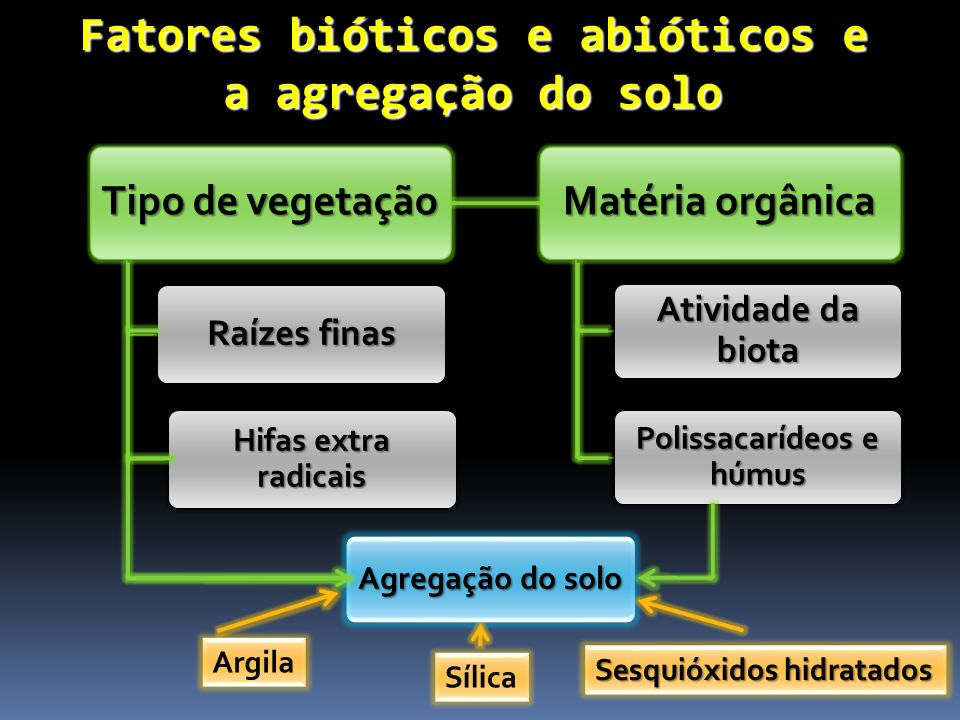 Fatores bióticos e abióticos e a agregação do solo