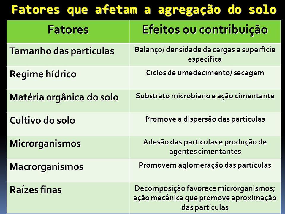 Fatores que afetam a agregação do solo Fatores Efeitos ou contribuição