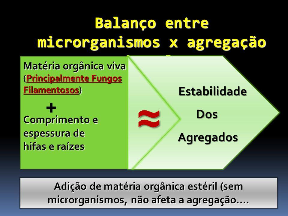 Balanço entre microrganismos x agregação do solo