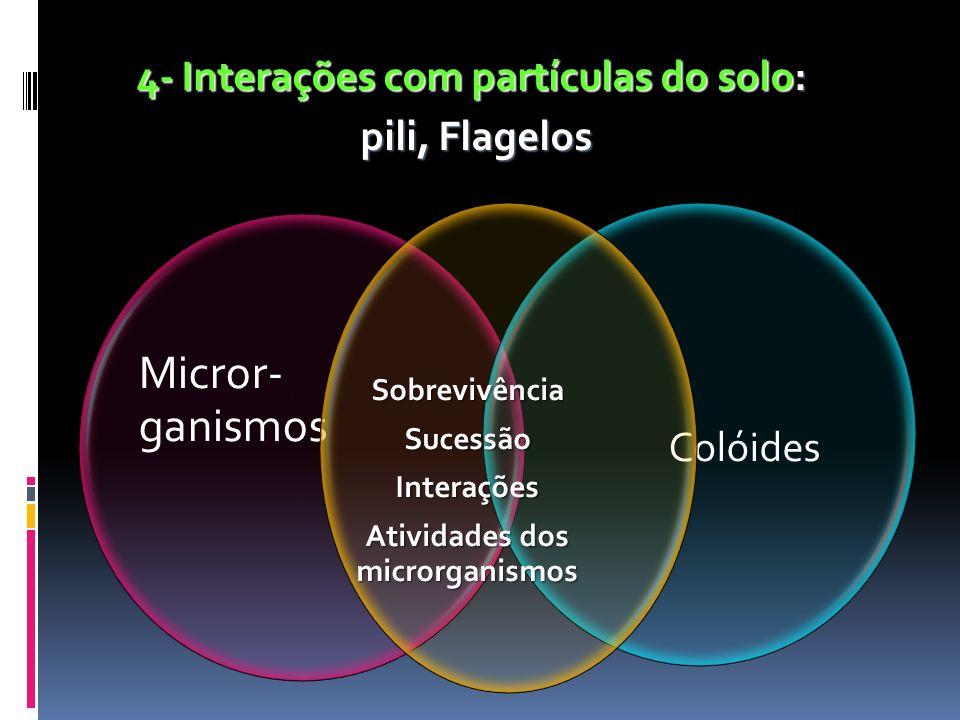 4- Interações com partículas do solo: