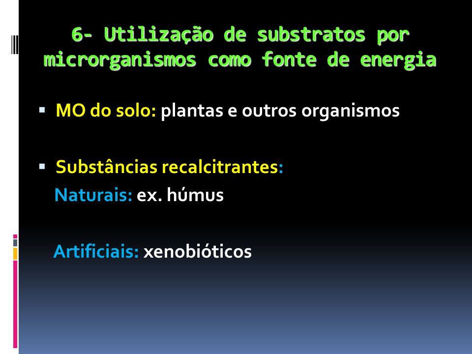 6- Utilização de substratos por microrganismos como fonte de energia
