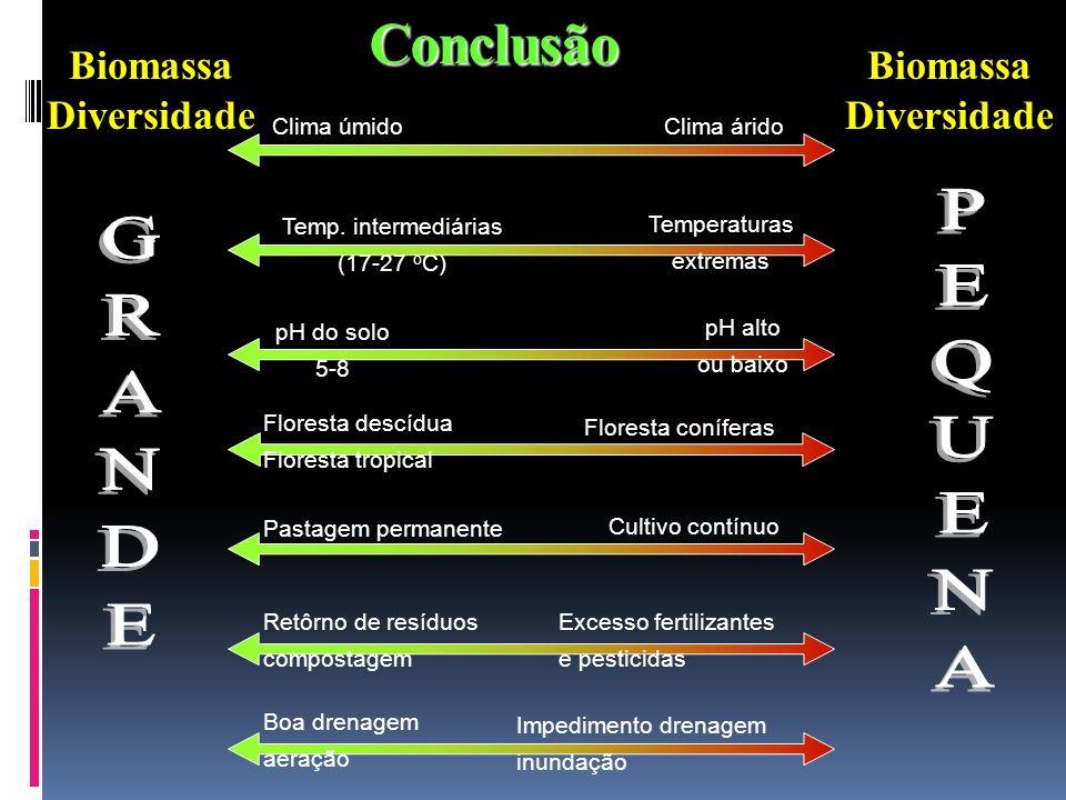 Conclusão PEQUENA GRANDE Biomassa Diversidade Biomassa Diversidade