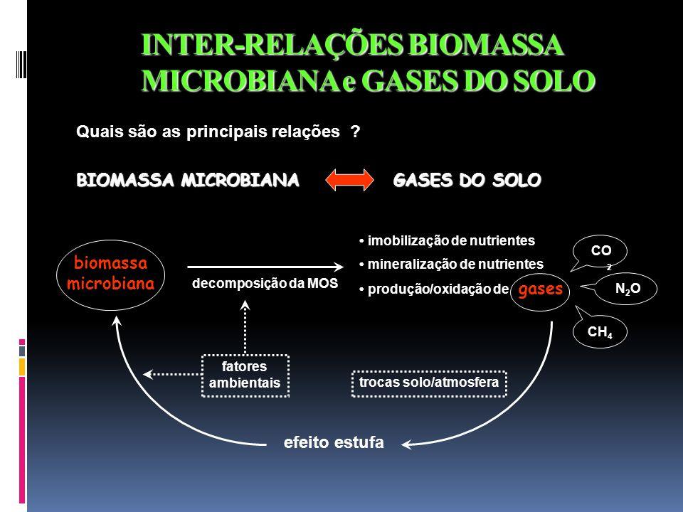 INTER-RELAÇÕES BIOMASSA MICROBIANA e GASES DO SOLO