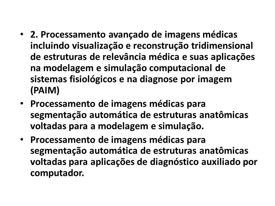2. Processamento avançado de imagens médicas incluindo visualização e reconstrução tridimensional de estruturas de relevância médica e suas aplicações na modelagem e simulação computacional de sistemas fisiológicos e na diagnose por imagem (PAIM)