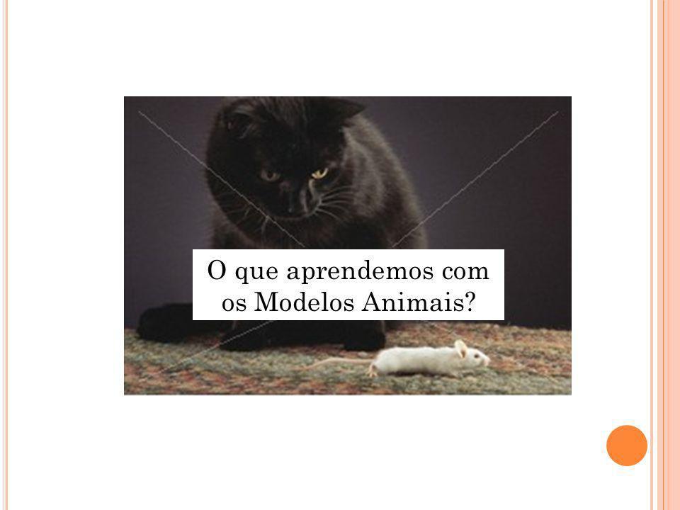 O que aprendemos com os Modelos Animais