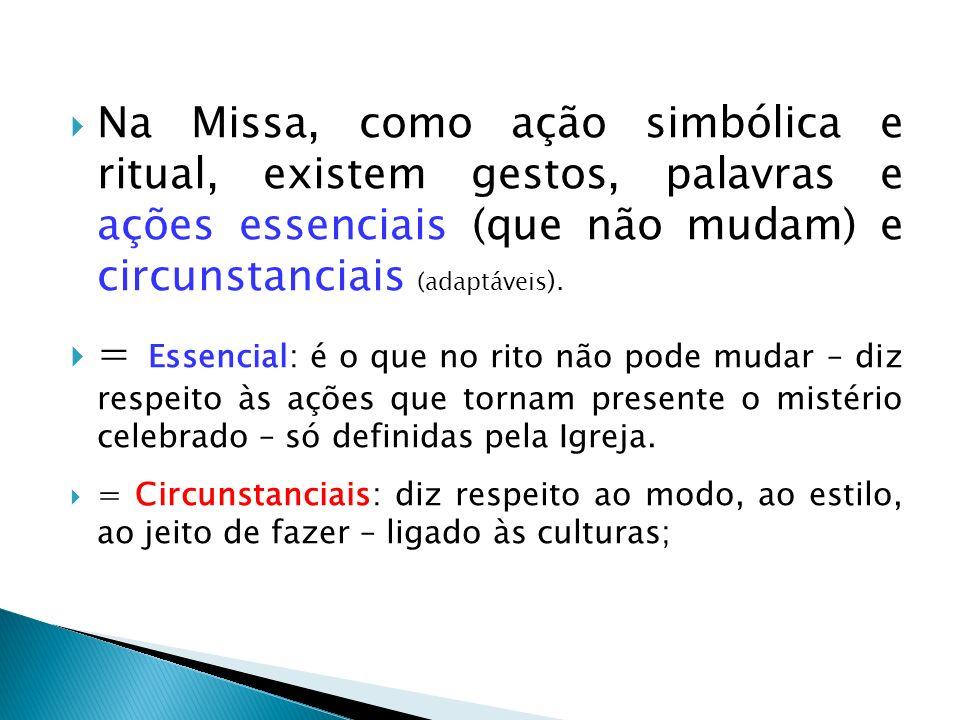 Na Missa, como ação simbólica e ritual, existem gestos, palavras e ações essenciais (que não mudam) e circunstanciais (adaptáveis).