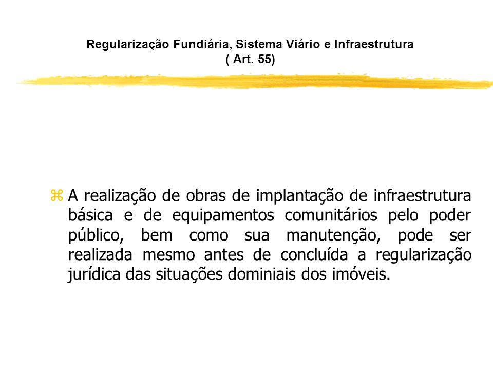 Regularização Fundiária, Sistema Viário e Infraestrutura ( Art. 55)