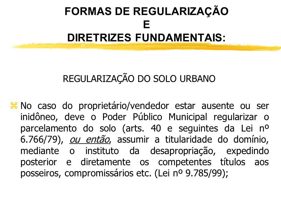 FORMAS DE REGULARIZAÇÃO E DIRETRIZES FUNDAMENTAIS: