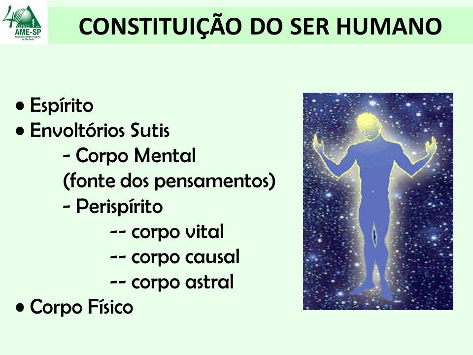 CONSTITUIÇÃO DO SER HUMANO