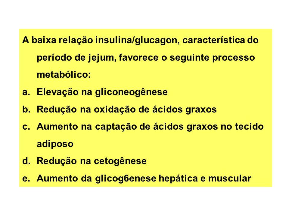 A baixa relação insulina/glucagon, característica do período de jejum, favorece o seguinte processo metabólico: