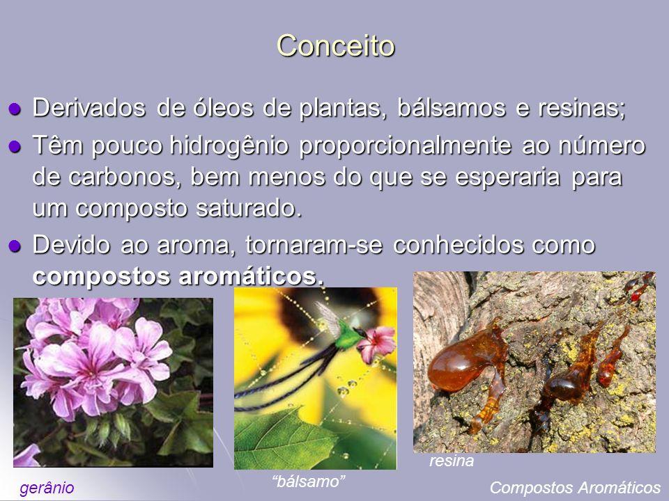 Conceito Derivados de óleos de plantas, bálsamos e resinas;