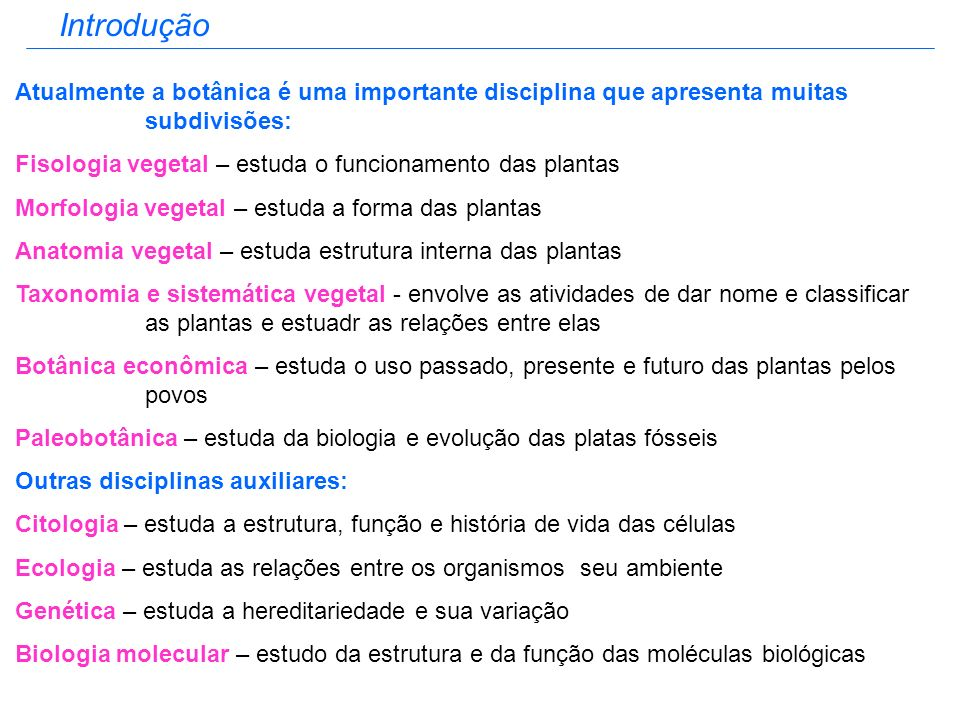 Introdução Atualmente a botânica é uma importante disciplina que apresenta muitas subdivisões: