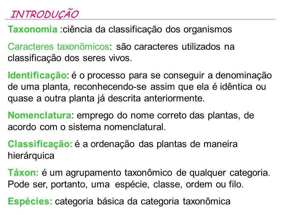INTRODUÇÃO Taxonomia :ciência da classificação dos organismos. Caracteres taxonõmicos: são caracteres utilizados na classificação dos seres vivos.