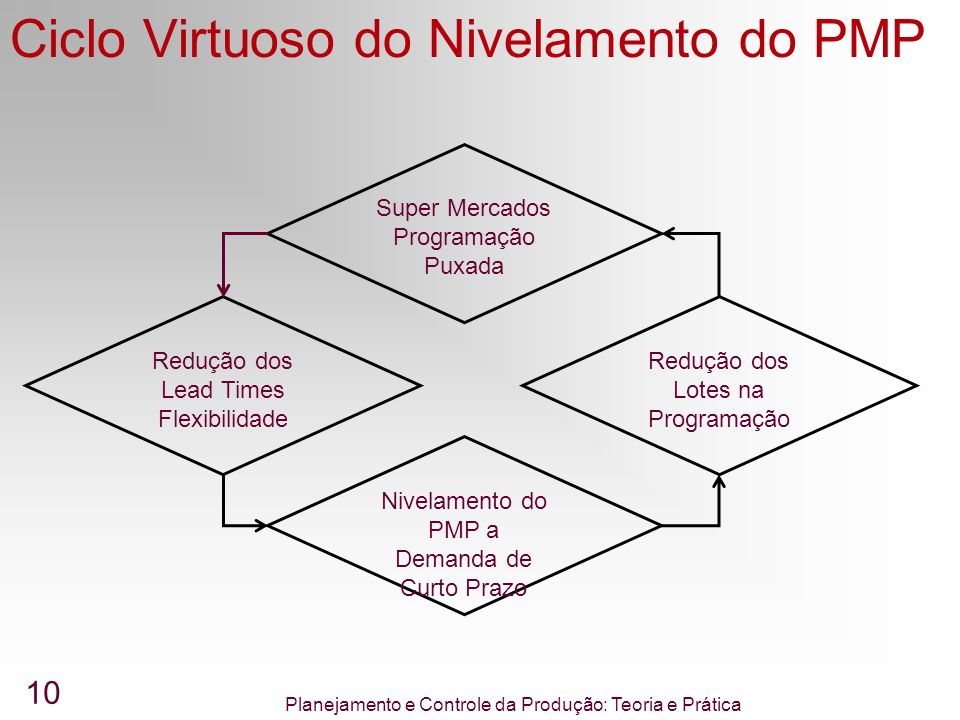 Ciclo Virtuoso do Nivelamento do PMP