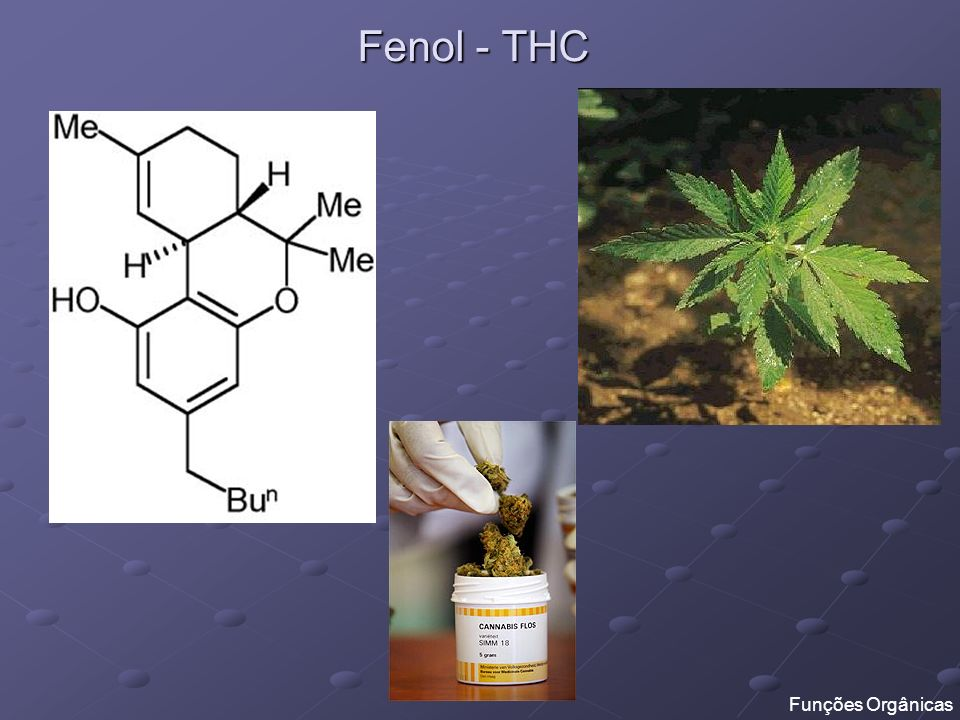 Fenol - THC Funções Orgânicas