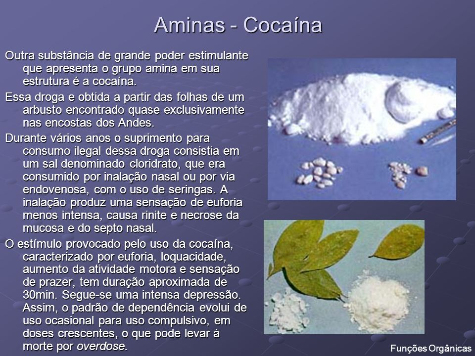 Aminas - Cocaína Outra substância de grande poder estimulante que apresenta o grupo amina em sua estrutura é a cocaína.