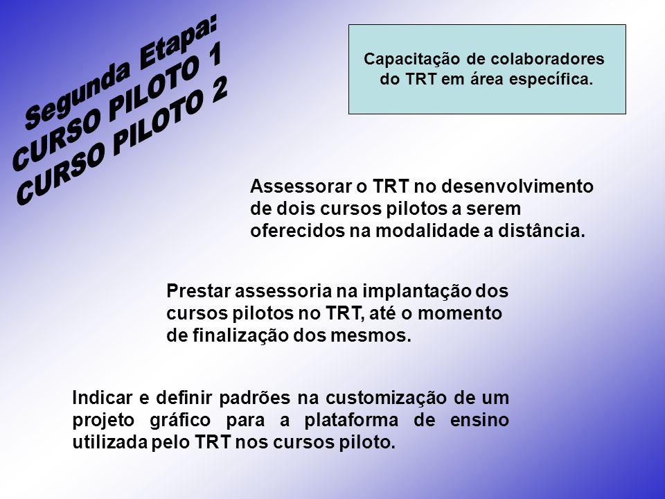 Capacitação de colaboradores do TRT em área específica.
