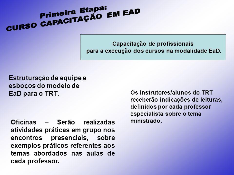 Estruturação de equipe e esboços do modelo de EaD para o TRT.