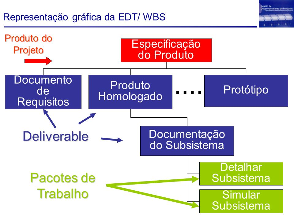 Representação gráfica da EDT/ WBS