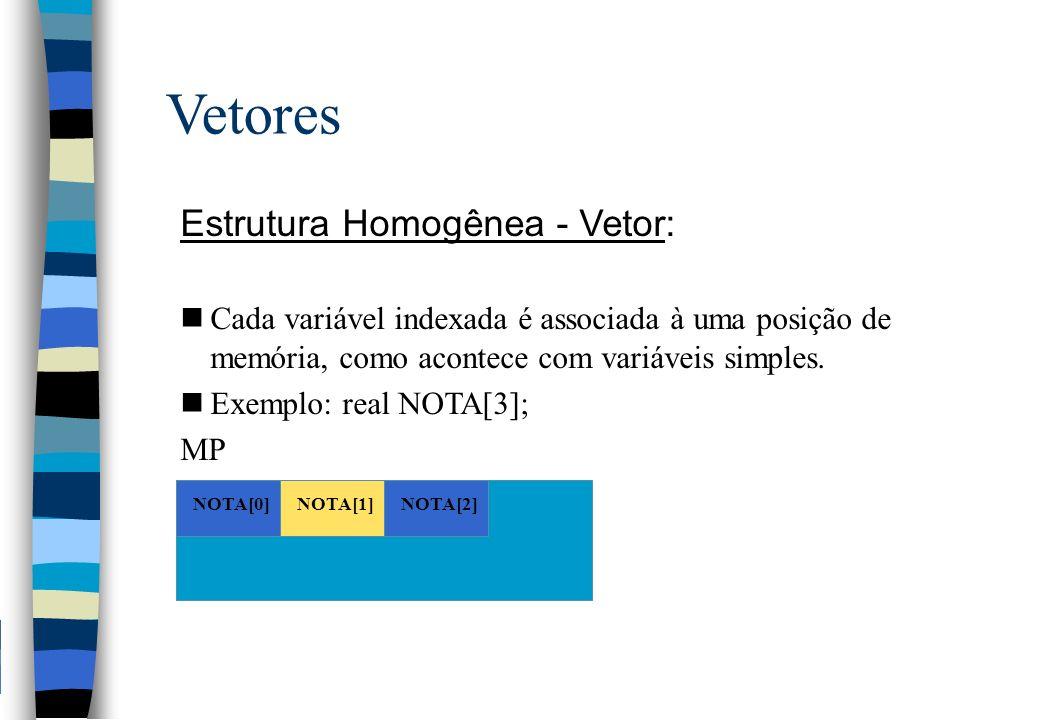 Vetores Estrutura Homogênea - Vetor: