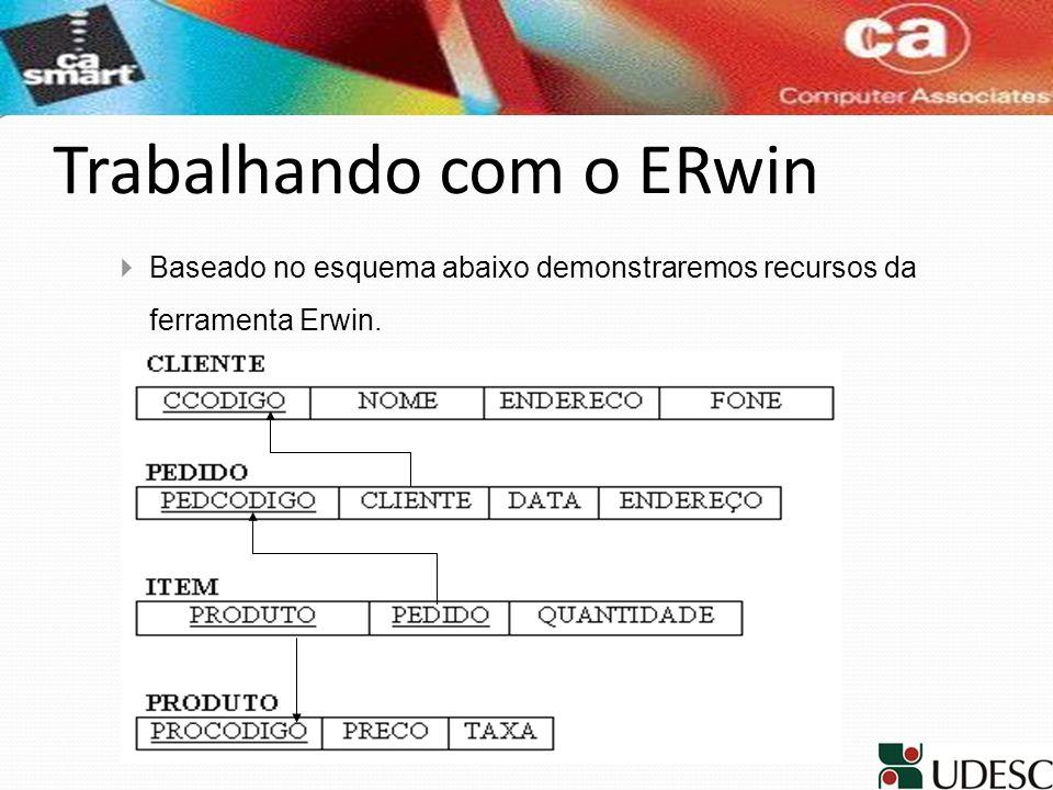 Trabalhando com o ERwin
