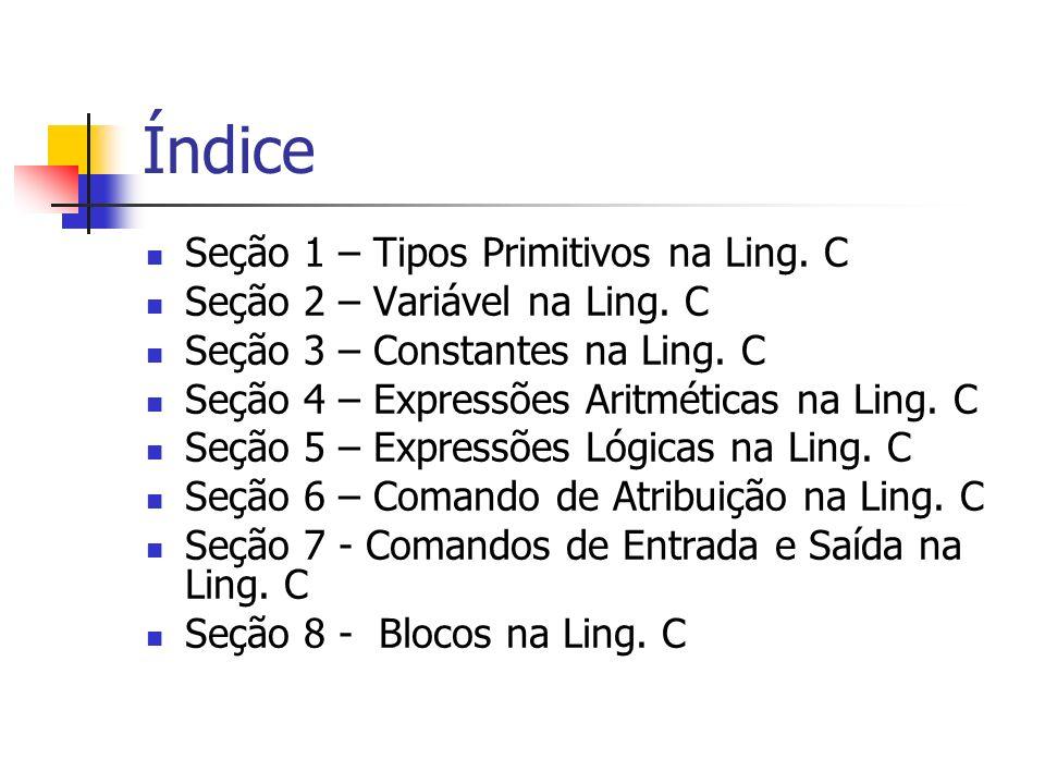 Índice Seção 1 – Tipos Primitivos na Ling. C