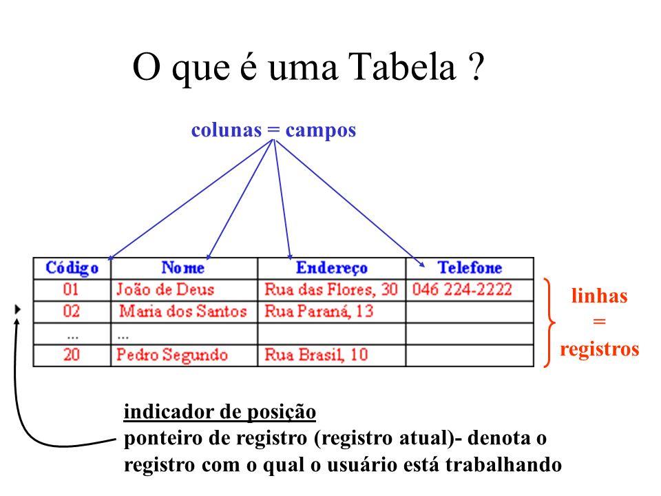 O que é uma Tabela colunas = campos linhas = registros