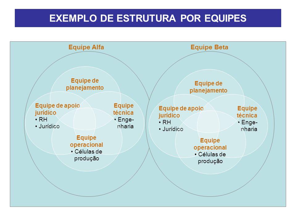 EXEMPLO DE ESTRUTURA POR EQUIPES