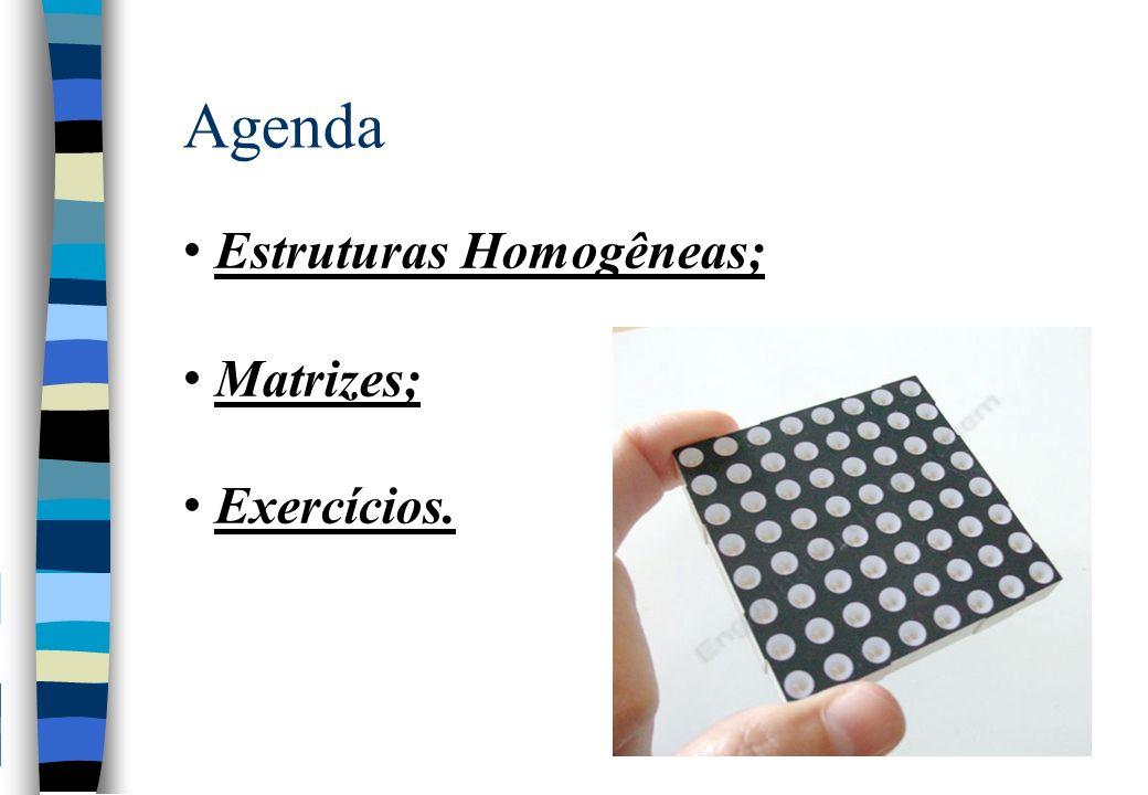 Agenda Estruturas Homogêneas; Matrizes; Exercícios.