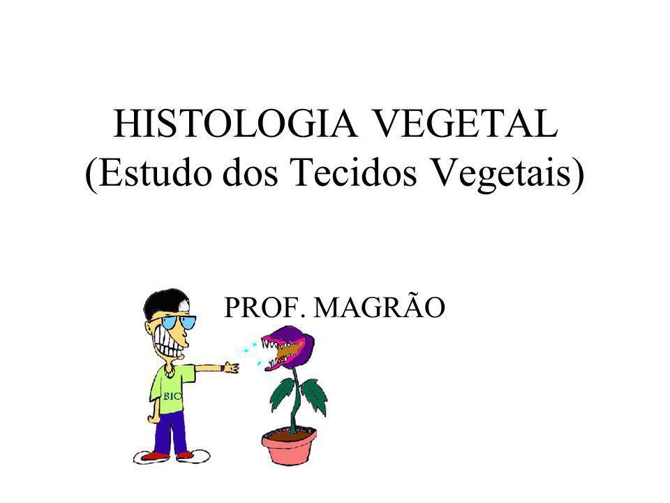 HISTOLOGIA VEGETAL (Estudo dos Tecidos Vegetais)