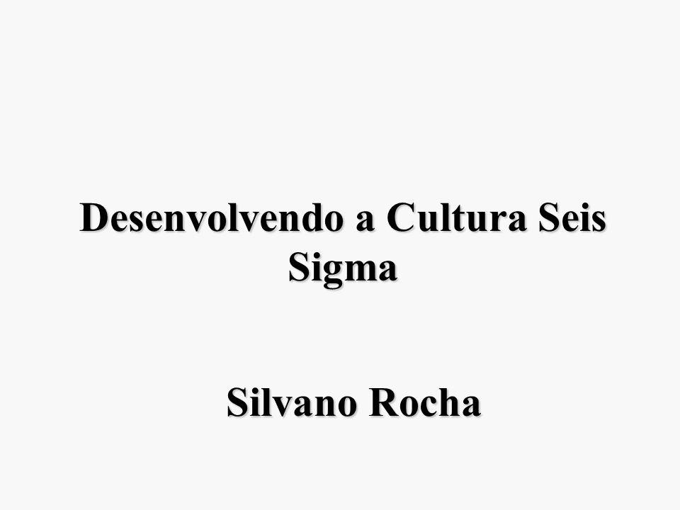 Desenvolvendo a Cultura Seis Sigma