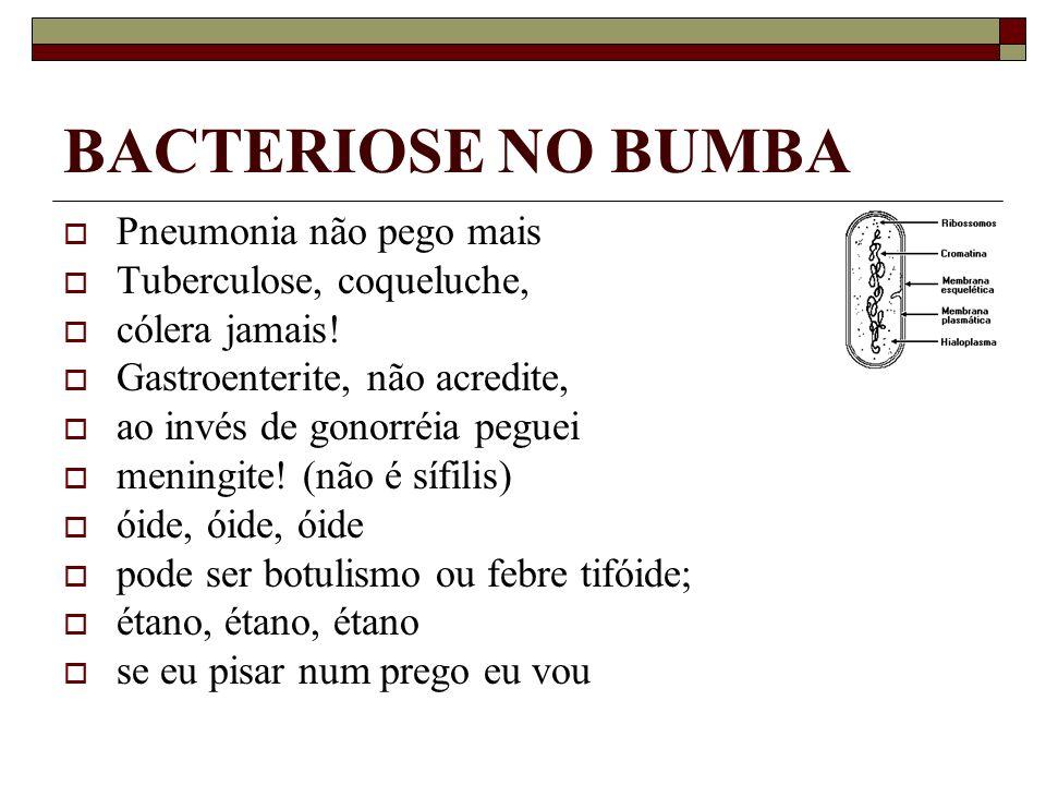 BACTERIOSE NO BUMBA Pneumonia não pego mais Tuberculose, coqueluche,
