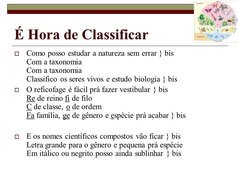 É Hora de Classificar Como posso estudar a natureza sem errar } bis Com a taxonomia Com a taxonomia Classifico os seres vivos e estudo biologia } bis.