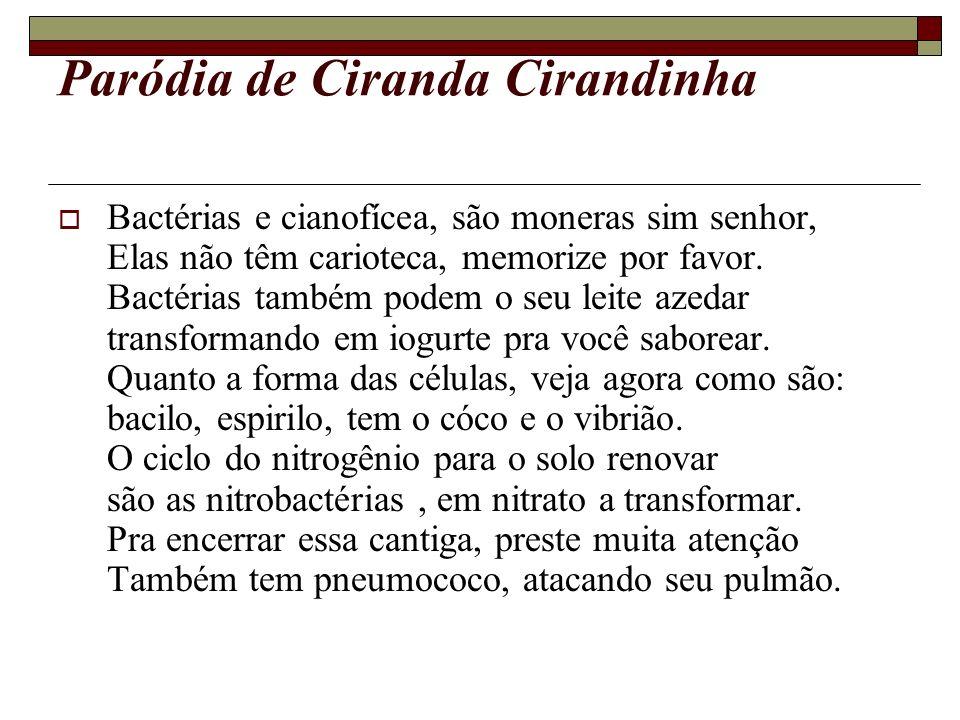 Paródia de Ciranda Cirandinha