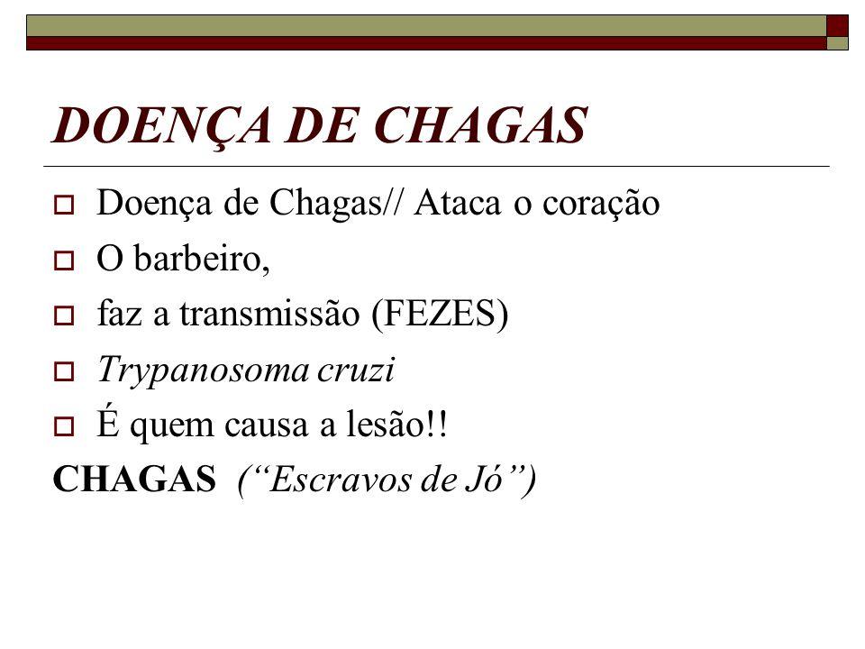 DOENÇA DE CHAGAS Doença de Chagas// Ataca o coração O barbeiro,