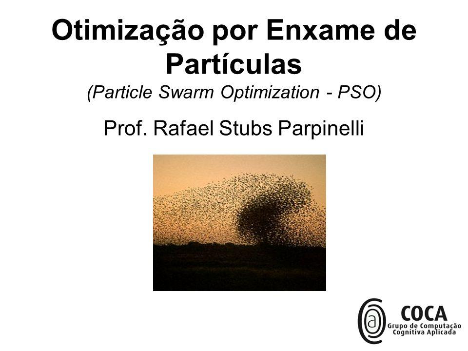 Prof. Rafael Stubs Parpinelli