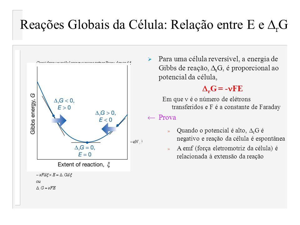 Reações Globais da Célula: Relação entre E e DrG