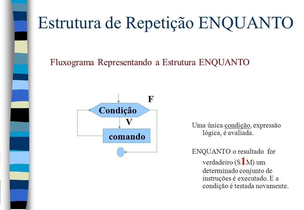 Fluxograma Representando a Estrutura ENQUANTO