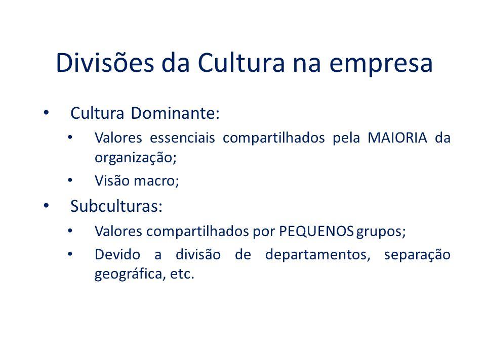 Divisões da Cultura na empresa