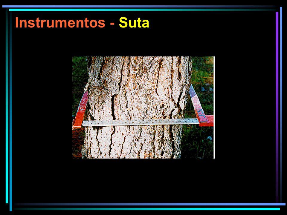 Instrumentos - Suta