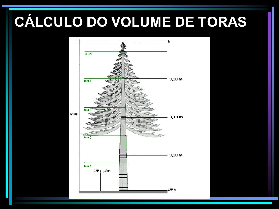 CÁLCULO DO VOLUME DE TORAS