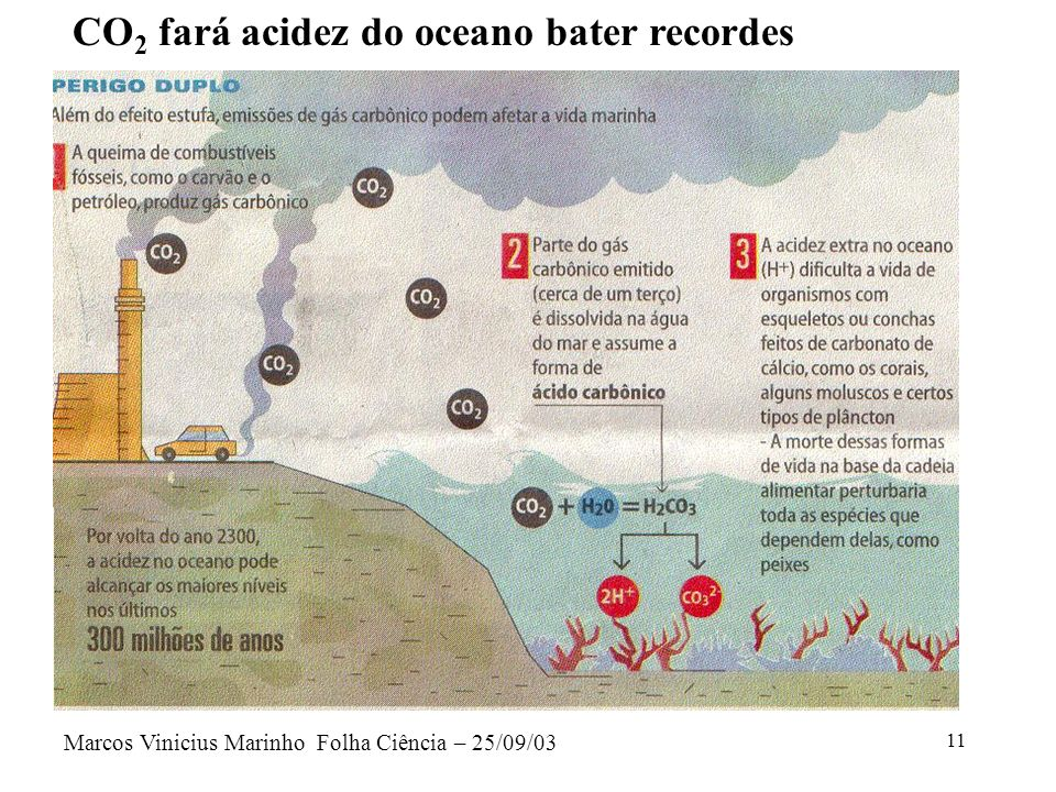 CO2 fará acidez do oceano bater recordes