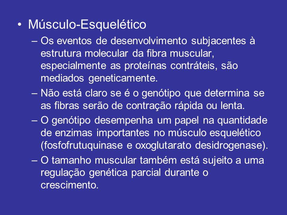Músculo-Esquelético