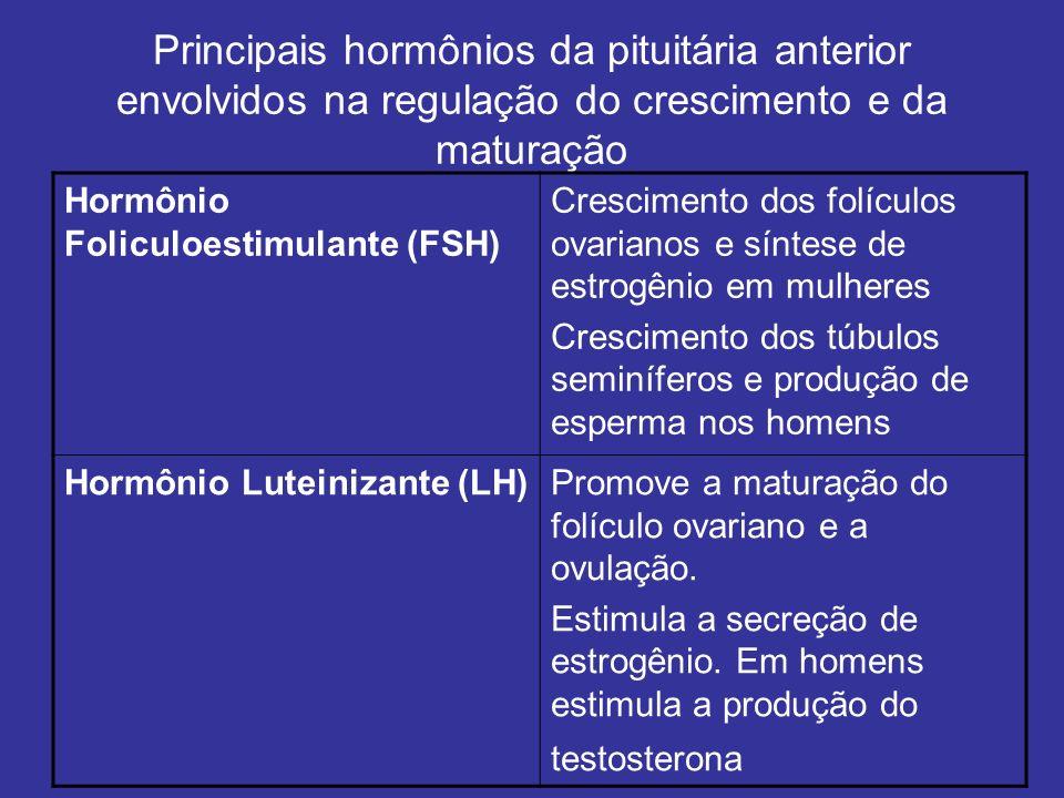 Principais hormônios da pituitária anterior envolvidos na regulação do crescimento e da maturação