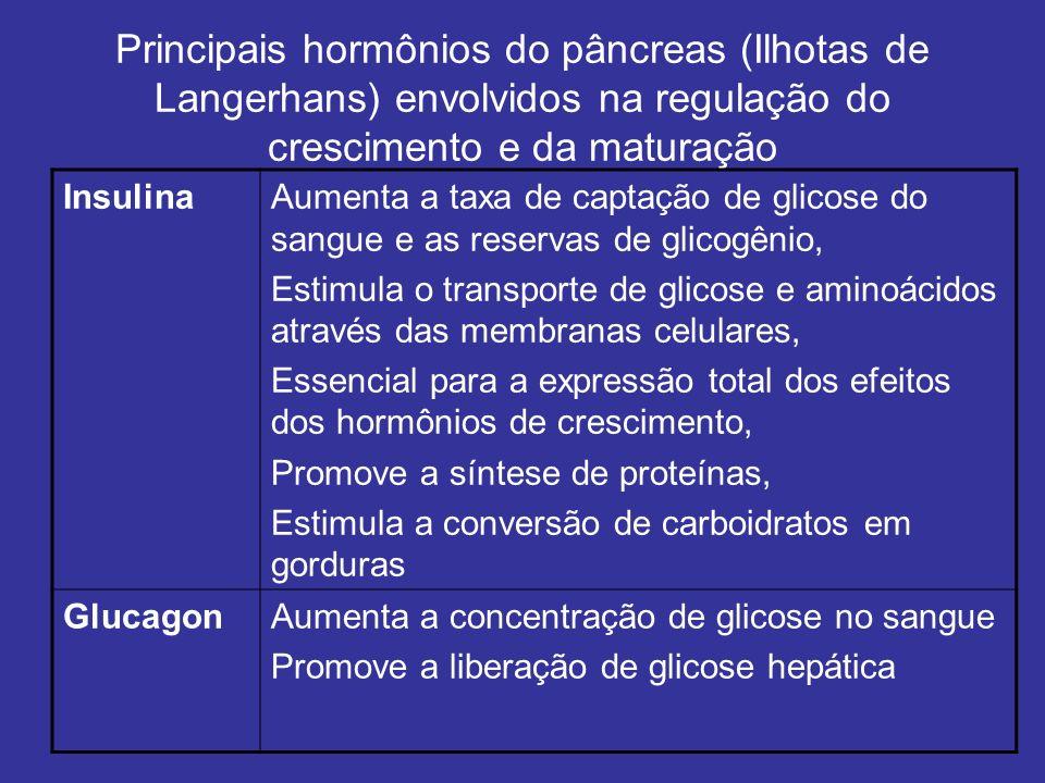 Principais hormônios do pâncreas (Ilhotas de Langerhans) envolvidos na regulação do crescimento e da maturação