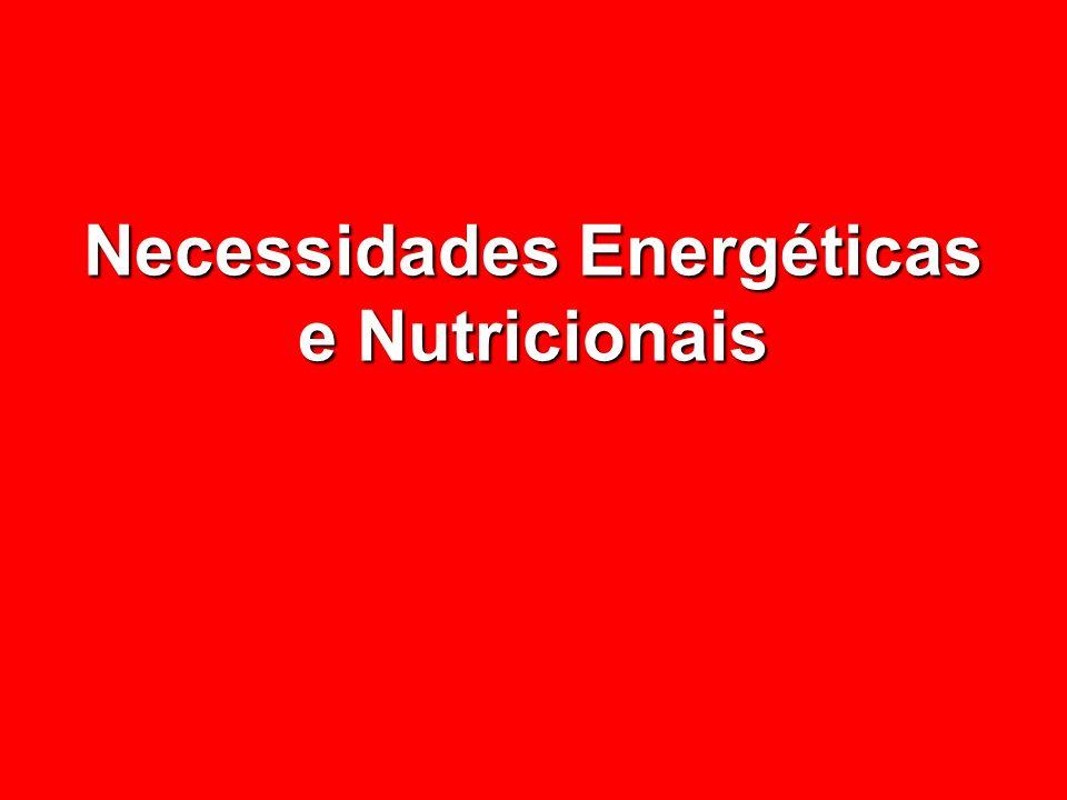 Necessidades Energéticas e Nutricionais