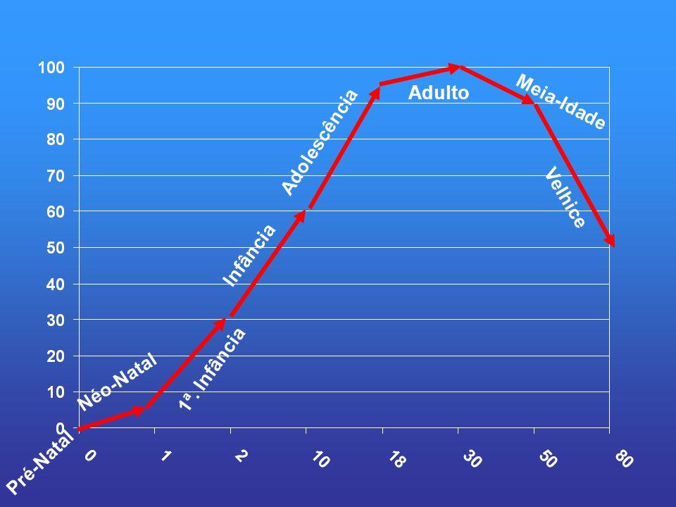 Adulto Meia-Idade Adolescência Infância Velhice 1ª. Infância Néo-Natal Pré-Natal